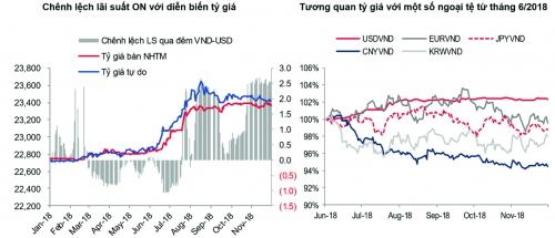 Tháng 11: Thị trường tiền tệ toàn cầu vẫn khá ổn định