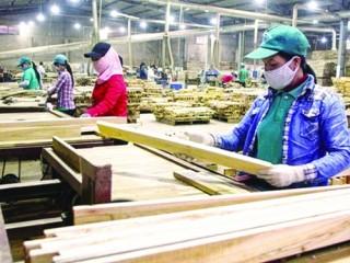 Để hóa giải những nguy cơ trong ngành gỗ