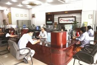 Ngân hàng Hợp tác chi nhánh Phú Thọ: Chủ động kết nối sức mạnh hệ thống