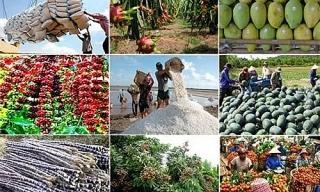 Chuỗi nông sản chủ động hơn về vốn