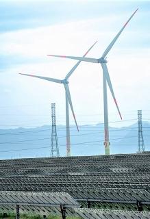 Top 10 doanh nghiệp năng lượng sạch chiếm 49% tổng công suất điện mặt trời, điện gió