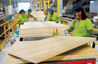 Tận dụng FTA, cơ hội để phát triển ngành chế biến gỗ