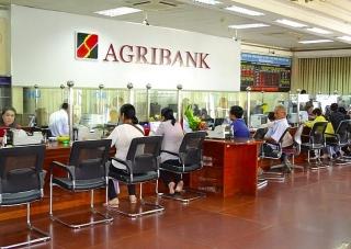 Agribank phát hành 5.000 tỷ đồng trái phiếu ra công chúng năm 2020