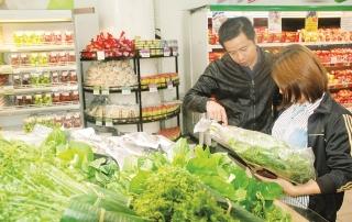 Phát triển chuỗi liên kết sản xuất và tiêu thụ rau an toàn