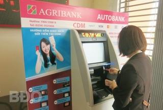 Agribank thúc đẩy phát triển tài chính toàn diện