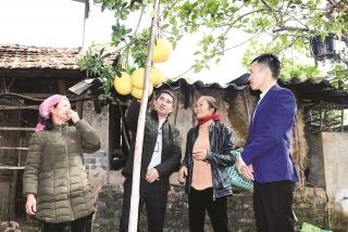 Bắc Giang: Hiệu quả vốn ưu đãi từ các điểm giao dịch xã