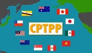 CPTPP có hiệu lực: Việt Nam có thể hưởng lợi ngay lập tức