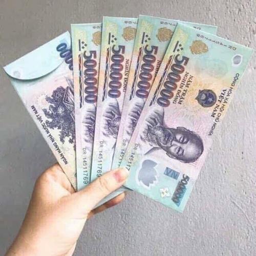 TP.HCM: Xử lý nghiêm việc sử dụng hình ảnh tiền trái phép