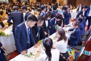 Đất Xanh Đà Nẵng giới thiệu dự án bến du thuyền Marina Complex