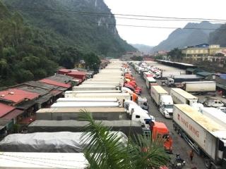 Gần 780 xe nông sản, trái cây tồn ứ tại các cửa khẩu