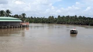 Xâm nhập mặn ở đồng bằng sông Cửu Long có xu thế giảm dần sau 26/3