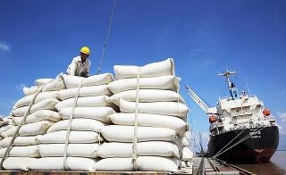 Bộ Tài chính đề nghị điều tra, xác minh thông tin tiêu cực trong hoạt động xuất khẩu gạo