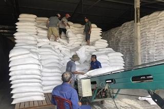 Sẽ tổ chức đấu thầu lại để bảo đảm mua đủ số lượng gạo dự trữ theo quy định