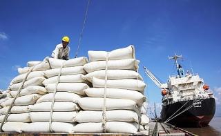 Bộ Công Thương báo cáo Thủ tướng việc 'đánh giá tình hình xuất khẩu gạo chưa nghiêm túc'