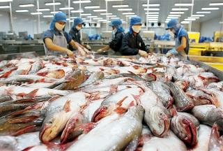 Mỹ áp thuế chống bán phá giá 0,15 USD - 2,39 USD/kg với cá tra-ba sa của Việt Nam
