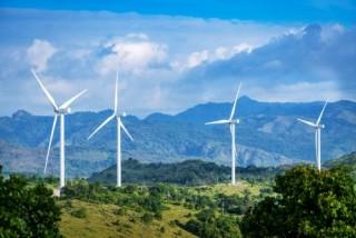 Việt Nam sẵn sàng phát triển hơn 1 GW điện gió vào năm 2021