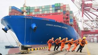 Thêm một cuộc khủng hoảng vận tải biển khi Covid-19 bùng phát ở miền nam Trung Quốc