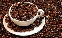 Cà phê Việt chờ thời khởi sắc