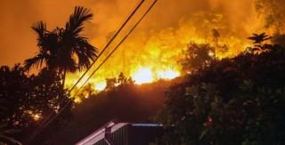 Cháy rừng lớn tại miền Trung: Cần chủ động phòng ngừa