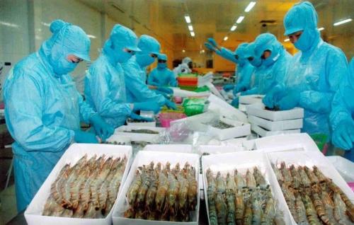 Mỹ áp thuế 0% đối với tôm nhập khẩu từ 31 doanh nghiệp Việt