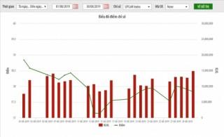 UPCoM tháng 8/2019: Giá trị vốn hóa vượt 1 triệu tỷ dồng