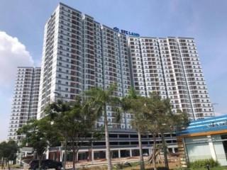 TP. Hồ Chí Minh kiểm tra việc chuyển nhượng nhà ở xã hội
