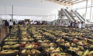 Khánh thành trung tâm chế biến rau quả lớn nhất Tây Nguyên
