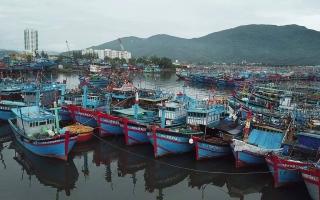 Đà Nẵng triển khai giải pháp ứng phó với bão số 5
