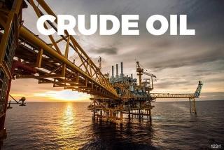 Giá dầu gia tăng do lo ngại nguồn cung Mỹ giảm vì một cơn bão khác