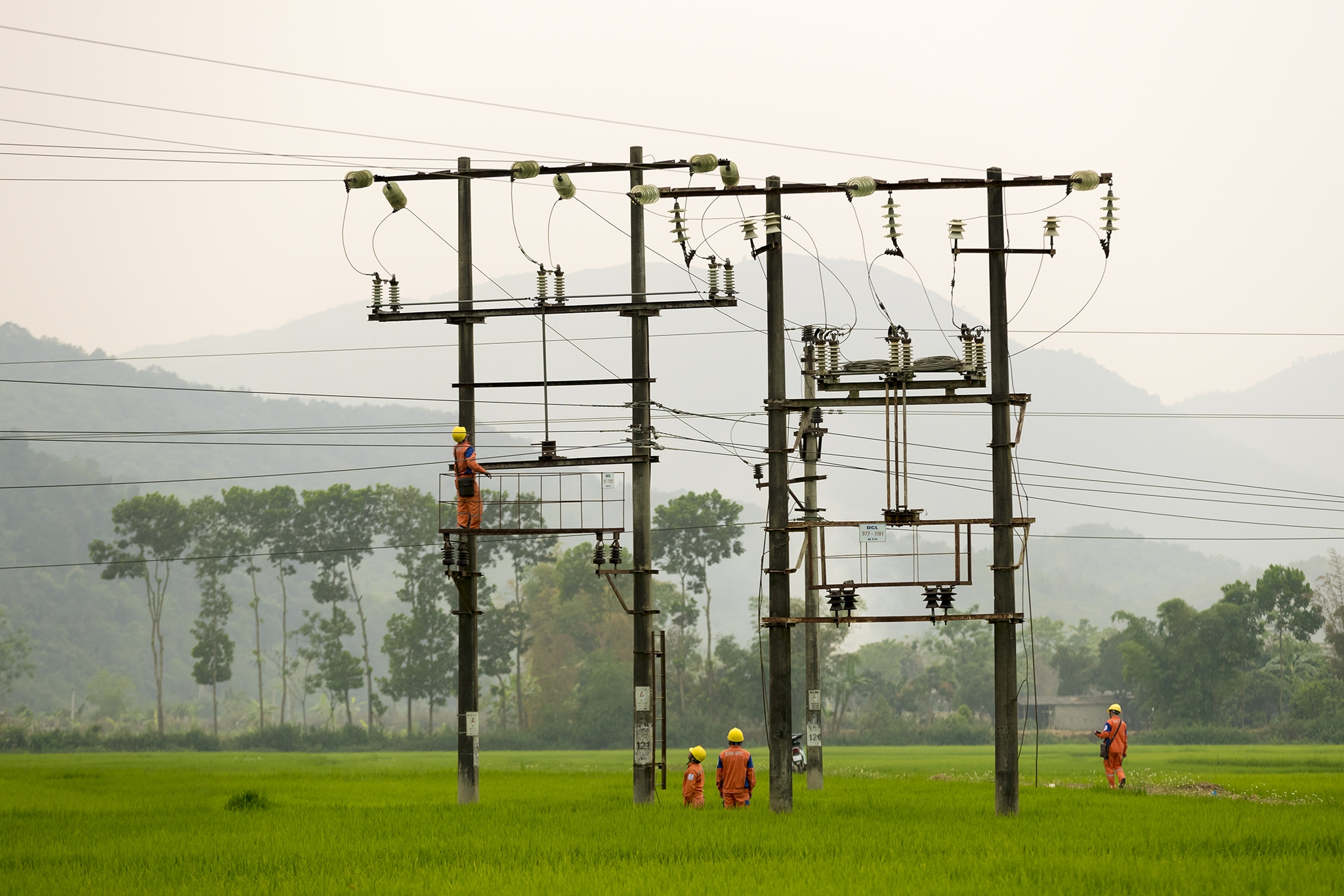 Gần 82.000 tỷ đồng đầu tư lưới điện nông thôn