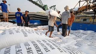 Philippines chấm dứt điều tra áp dụng biện pháp tự vệ với gạo nhập khẩu