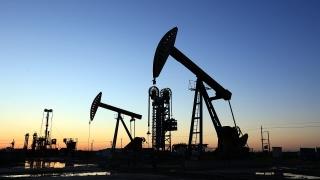 Giá dầu chạm đỉnh của nhiều năm