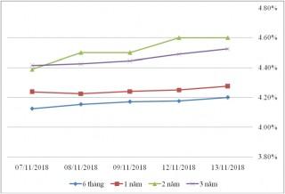 Thị trường TPCP ngày 13/11: Lãi suất thực hiện biến động nhẹ