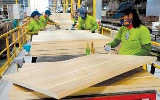 Gian lận thương mại là thách thức lớn nhất với ngành gỗ xuất khẩu