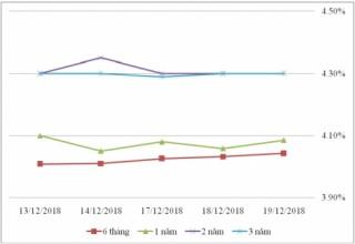 Thị trường TPCP ngày 19/12: Lãi suất thực hiện kỳ hạn 5 năm đảo chiều tăng