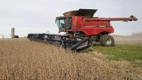 Trung Quốc đẩy mạnh mua đậu tương Mỹ