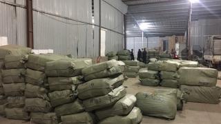 Khởi tố vụ buôn lậu dược liệu quy mô lớn