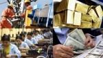 Ủy ban Giám sát Tài chính: Chưa cần thiết điều chỉnh tỷ giá
