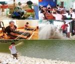 Giảm 50% lãi suất cho vay đối với các hộ nghèo tại các huyện nghèo.