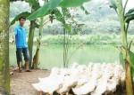Nhịp cầu dẫn vốn ưu đãi trên vùng núi Tản, sông Đà