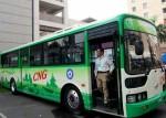 TP.HCM hỗ trợ lãi suất cho các DN mua 1.680 xe buýt mới