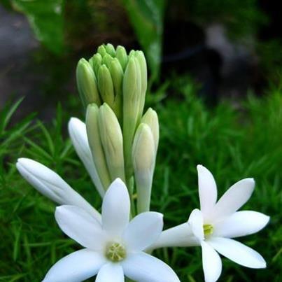 http://thoibaonganhang.vn/stores/news_dataimages/tbnh/062013/27/10/51cd42d69e0fd-medium20141120113430.8353000.jpg
