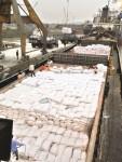 Âu lo xuất khẩu gạo