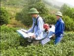 Hiệu quả chính sách BHTG  nhìn từ Hà Giang