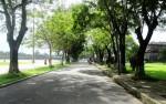 Con đường mùa Thu xứ Huế