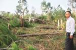 Cùng Quảng Bình khắc phục hậu quả sau bão