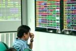 """""""Mẻ lưới"""" của nhà đầu tư lớn"""