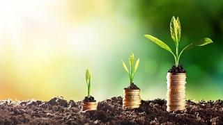 Khơi thông dòng vốn xanh từ các ngân hàng