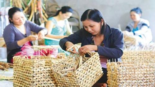 Năm 2030, gần 6 triệu người có nhu cầu đào tạo nghề nông nghiệp