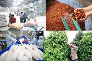 Tìm hướng đi cho ngành chế biến nông, thủy sản